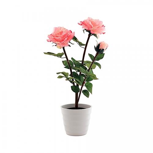 Светильник СТАРТ LED Хризантема3 розовый