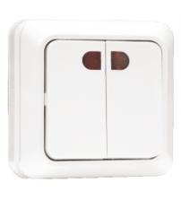 Выключатель 2-клавишный с индикатором 10А белый Рим EKF